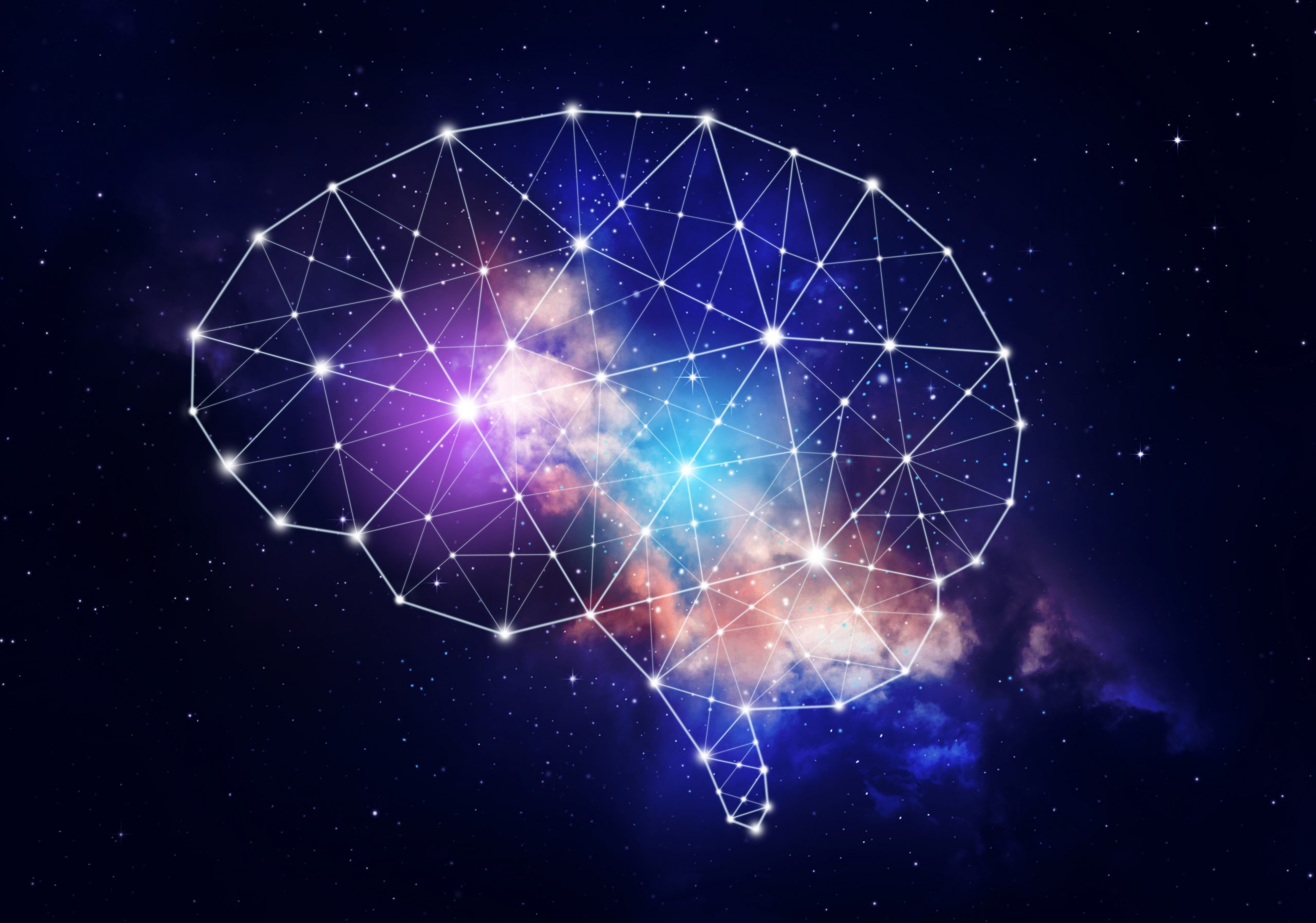 Is the human brain a model of the universe?